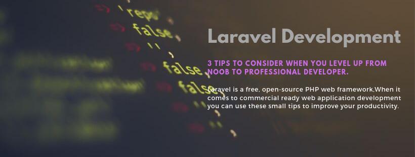 Noob to Professional Laravel Development -A Developer Guide