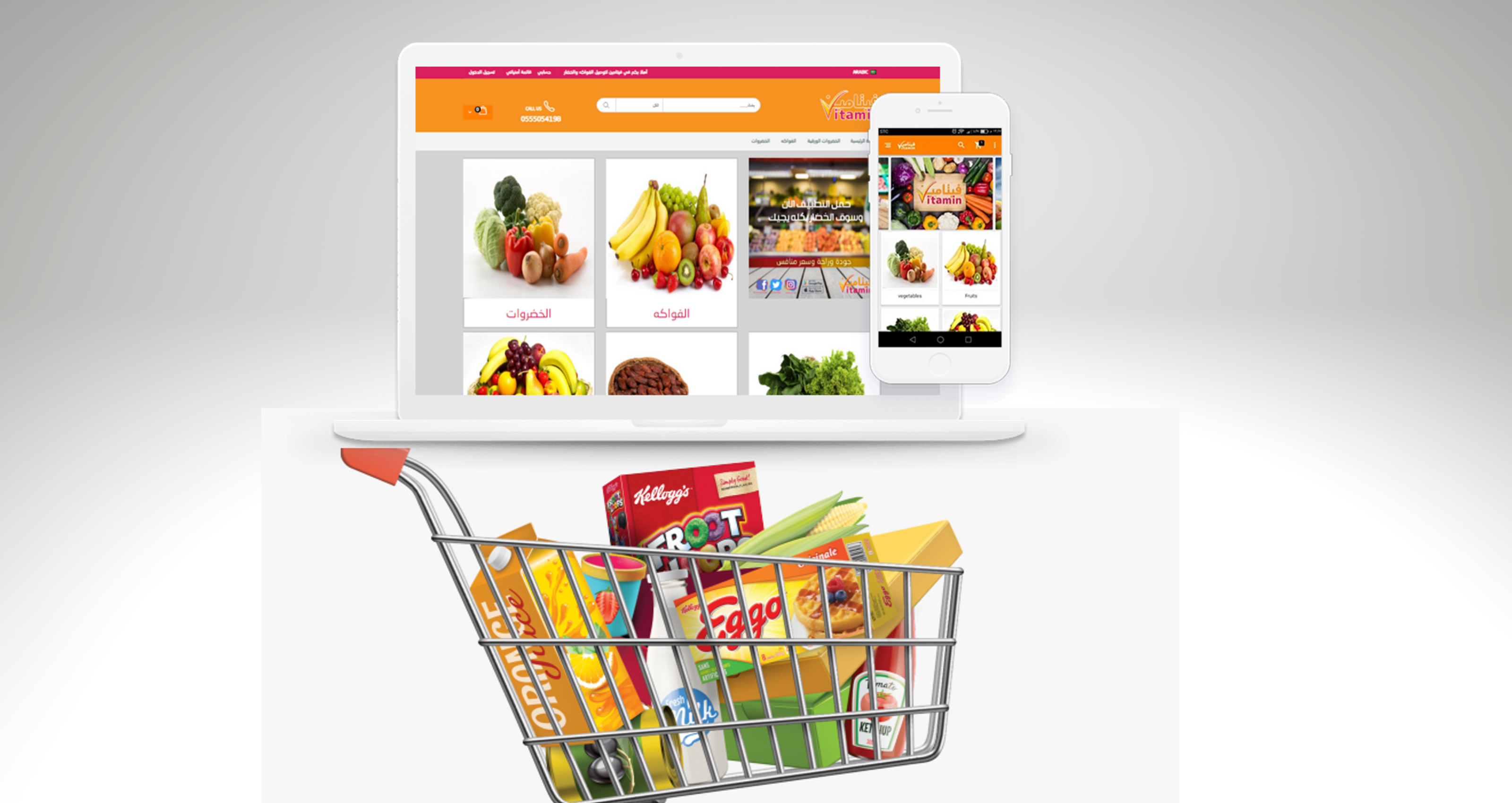Remember These Things Before Setting Up A Grocery E-Commerce